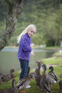 New Zealand, North Island, Bay of Plenty, Rotorua, Lake Tikitapu, girl feeding ducks - JB000016