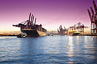 Germany, Hamburg, Parkhafen, harbour, Elbe, container ship - MS003341