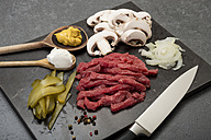 Ingredients for beef Stroganoff, studio shot - CSTF000005