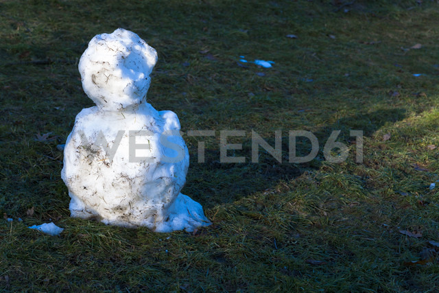 Germany, leftovers of snowman on a meadow - TC003913