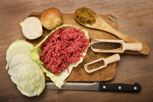 Ingredients for cabbage mincemeat stew - CSTF000018