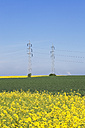 Germany, North Rhine-Westphalia, Pulheim, view to rape fields (Brassica napus) in front of overland high voltage power lines and emission of lignite power plant - GW002611