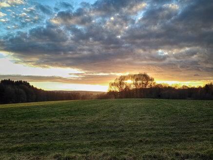 Sunset, Ruppichteroth, Bergisch Land, Rhein-Sieg district, North Rhine Westphalia, Germany - ONF000399