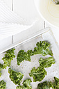 Pieces of fresh curly kale on baking tray, elevated view - EVGF000406