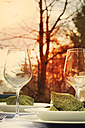 Festive laid garden table at sunset, close-up - ONF000402