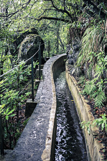 Portugal, Madeira, Levada, water channel - VTF000132