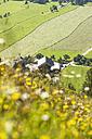 Austria, Salzburg State, Flachau, farmhouse - HHF004749