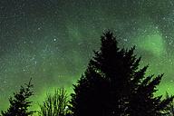 Norway, Lofoten, Polar lights (aurora borealis) on Gimsoy - STS000325