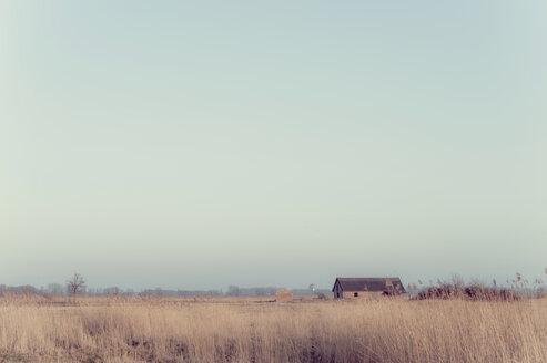 Germany, Mecklenburg-Western Pomerania, Ruegen, landscape with building - MJF000913