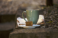 Coffee Cup, plate of chocolate cookies and newspaper on stone step - EBSF000079