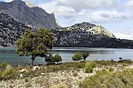 Spain, Balearic Islands, Mallorca, Serra de Tramuntana - SCH000149