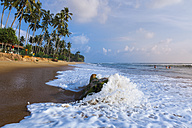Sri Lanka, Western Province, Beach of Waskaduwa - AM001904
