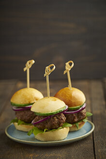 Mini-Burger with mincemeat, salad and red onions on plate - ECF000458