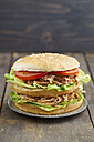 Burger with pulled pork, tomato and salad on plate - ECF000439