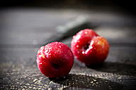 Two Chinese plums (Prunus salicina) on dark wooden table - MAEF008222