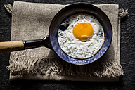 Fried egg in pan and tablecloth - SARF000335