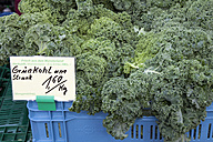 Plastic box of curly kale on market - WIF000484