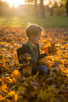 Little boy sitting on autumn leaves in park - SARF000369