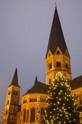 Germany, North Rhine-Westphalia, Bonn, Christmas tree at Bonn Minster - WI000494