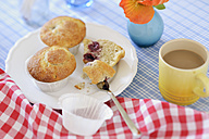 Cherry muffins on plate - BR000120