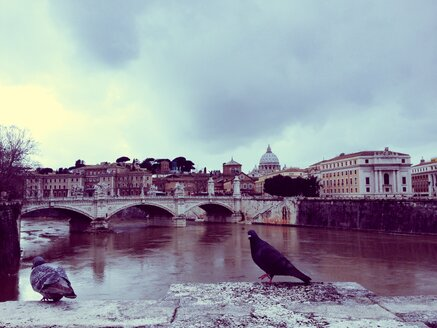 Vatican, Rome, Italy - RIMF000175