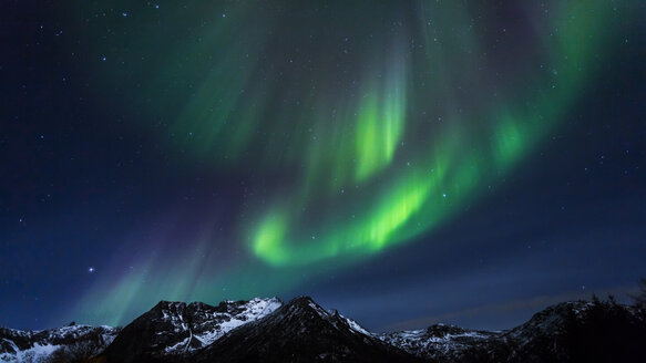 Polar lights (aurora borealis) on Gimsoy, Lofoten, Norway - STSF000350