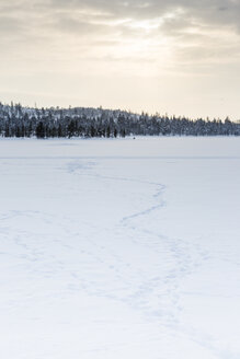 Finland, Winter landscape near Inari - SR000386