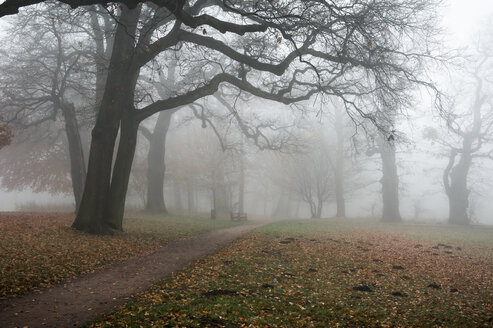 Germany, Hamburg, Jenischpark in fog - RJF000036