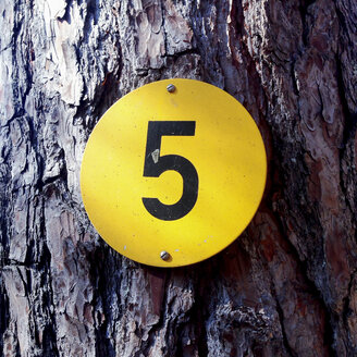 Number 5, tree, sign - GSF000850