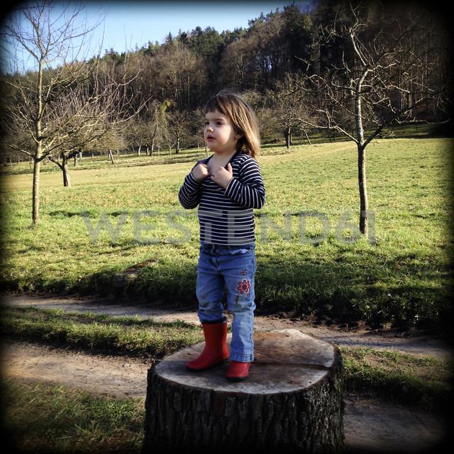 Germany, Baden-Wuerttemberg, orchards, Child on tree stump - LVF000872