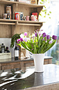Bunch of tulips on kitchen counter - FKF000463