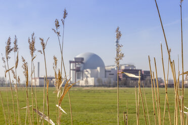 Germany, Schleswig-Holstein, Brokdorf, grasses and nuclear power plant in the background - NKF000074