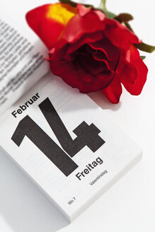 Red rose and tear-off calendar showing date of Valentine's day on white ground - CSF021076