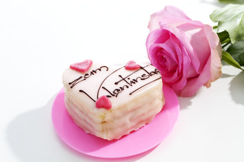 Pink rose and petit four on white ground - CSF021096