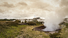 New Zealand, Taupo Volcanic Zone, Craters of the Moon, geothermal field - WV000519