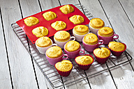 Baked cupcakes and muffins on cooling grid and grey wooden table - CSF021120