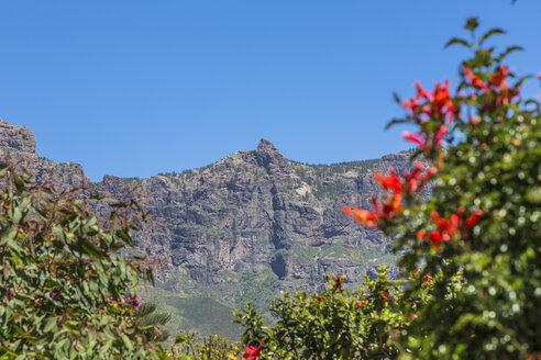 Spain, Gran Canaria, San Bartolome de Tirajana, Massif Pozo de las Nieves - MABF000223