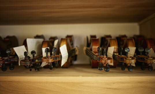 Violins to be repaired in a violin maker's workshop - DIKF000111