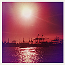 Container port, Hamburg, backlit, Norder Elbe, Hamburg, Germany - SEF000633