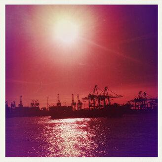 Container port, Hamburg, backlit, Norder Elbe, Hamburg, Germany - SEF000633