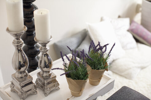 Decoration with candle holders and two potted plants at living room - NNF000008