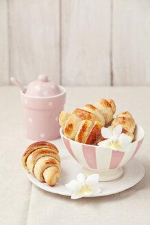 Homemade mini croissants, studio shot - ECF000489