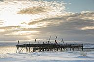 Norway, Skallelv, Stockfish drying on rack - SR000484