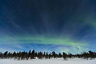 Aurora borealis in Finnland near Inari - SR000482
