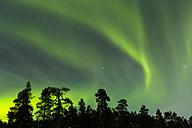 Aurora borealis in Finnland near Saariskalae - SR000479