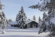 Finnland, near Saariselka, Log cabin between snow covered trees - SR000468