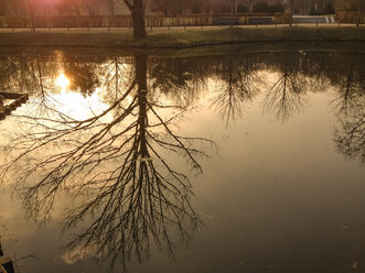 Germany, Berlin, sunset at pool in Tiergarten - FBF000333