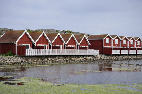 Sweden, Kungshamn, Row of typical red wooden houses - BR000208
