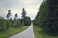 Sweden, Stroemsund, road through forest - BR000421