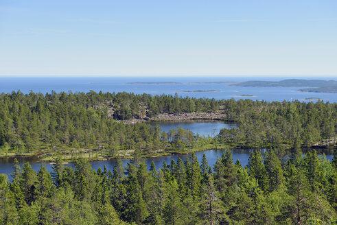 Sweden, Oernskoeldsvik, Skuleskogen National Park with lakes and Baltic Sea - BR000374